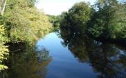 Przebudują prawy brzeg rzeki Elbląg