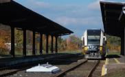Dolnośląskie: Koszt robót linii lwóweckiej zbyt wysoki do oczekiwanych korzyści
