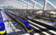 Połączenie kolejowe do CPK na liście priorytetów nowego CEF