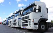 Raport ACEA. W Polsce najliczniejsze i najnowocześniejsze floty ciężarówek