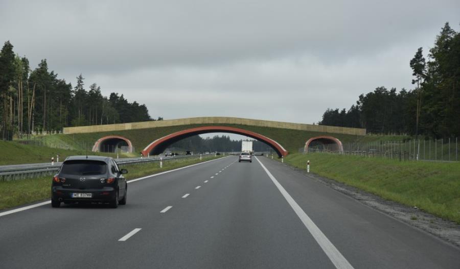Program inwestycyjny dla S7 Płońsk – Czosnów podpisany. Przetarg niebawem