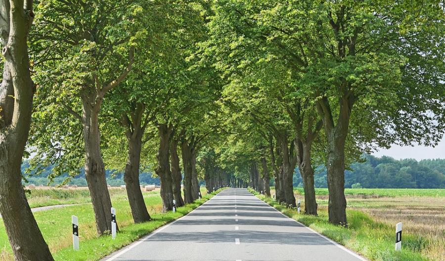 Wołów: nowy przetarg na przebudowę drogi wojewódzkiej nr 338