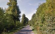 Szykuje się rozbudowa drogi między Nidzicą a Wielbarkiem