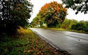 """Z niewykorzystanych środków """"autobusowych"""" skorzystają trasy samorządowe"""