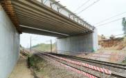 PKP PLK: Przetargi na wiadukty nad linią 133