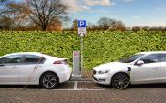 W Polsce jeździ niespełna 20 tys. aut elektrycznych. Liczba rośnie