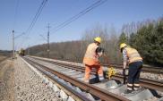 CPK z ofertami na studium dla kolei do Zamościa i Bełżca. Dalej bardzo drogo