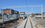 Prace PLK w Dąbrowie Górniczej na półmetku [zdjęcia]
