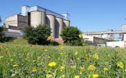 CEMEX Polska opublikował Deklarację Środowiskową za 2020 rok
