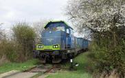 Rozbudowa bocznic szansą dla kolei towarowej. Będzie rządowy program bocznicowy?