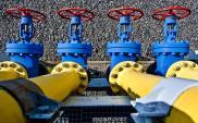 Kopacz: Polska za budową połączenia gazowego z Litwą