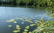 Skanska przystosuje stopień wodny Chróścice do III klasy drogi wodnej