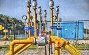 URE prezentuje charakterystykę polskiego rynku gazu