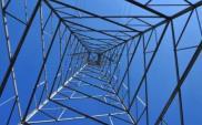 """UOKiK: Trwa pięć """"energetycznych"""" postępowań"""