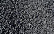 PKP Cargo przewiezie węgiel dla Elektrowni Kozienice