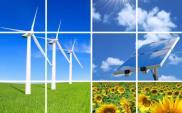 100% energii z OZE za 35 lat