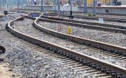 PLK szuka wykonawcy modernizacji mostów, wiaduktów i peronów na linii 272