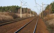 Rusza przetarg na rewitalizację linii 201 w rejonie Bydgoszczy