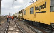 Torpol. Trzykrotny wzrost skali działalności