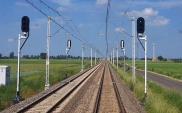 Prace na E20 do końca 2022 roku. Konieczne wzmocnienie gruntu w Kutnie i Łowiczu