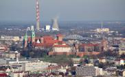 20% Polaków uważa palenie śmieci w domach za ekologiczne