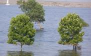 NIK: Grozi nam powódź