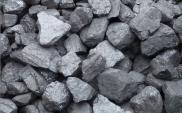 Węgiel pozostanie paliwem przyszłości