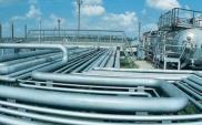 Sikorski: Polska bezpieczniejsza energetycznie niż sąsiedzi