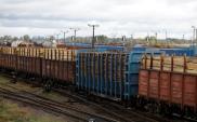 PKP Cargo liczy na rozwój kolejowych połączeń z Chinami