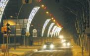 Polskie miasta coraz bardziej ekologiczne w kwestii świątecznych dekoracji