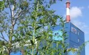 EC Zgierz: Jest przetarg na budowę kotła parowego