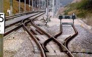Poznańskie i Lubuskie o wspólnym połączeniu kolejowym