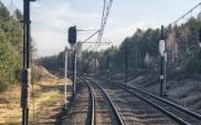 Prawda o rynku kolejowym, drogowym i lotniczym w Polsce