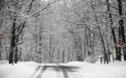 Poznań: ZDM od listopada startuje z zimowym utrzymaniem dróg