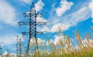 PSE: Ponowne ograniczenia w dostawach energii