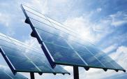 Polskie panele fotowoltaiczne wypierają z rynku chińskie
