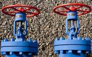 Gaz-System podpisał cztery nowe umowy