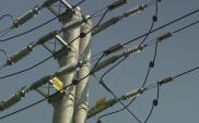 Mazowieckie: Jest przetarg na linię energetyczną Łomianki – Czosnów
