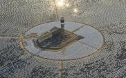 Śmiertelne lustra. Tysiące zwierząt giną w promieniach słońca