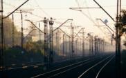 Czapski: Rozwój transportu lądowego zależy od organizacji i kosztów dostępu infrastruktury