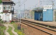 Nieprawidłowości na linii 133 nie dotyczą odcinka modernizowanego przez ZUE