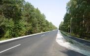 Osiem firm chce rozbudować DW-185 w Wielkopolsce
