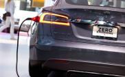 Czy Norwegia zostanie rajem dla Tesli? Od 2025 roku zakaz sprzedaży aut benzynowych