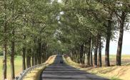 Trakcja PRKiI ma umowę na budowę odcinka Stolno – Wąbrzeźno