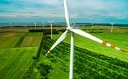 Giganci energetyczni nie będą rozwijać energetyki wiatrowej. Wyłamuje się PGE