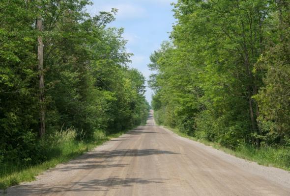 Lasy Państwowe inwestują w gminne drogi