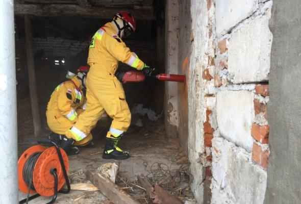 Kujawsko-pomorskie: Strażacy znowu ćwiczą na S5