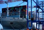 GUS: Przeładunki w portach morskich do końca kwietnia wzrosły o 22,1%