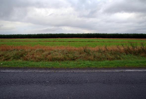 Z 5 mld na drogi lokalne 250 mln zł może rozdzielić premier