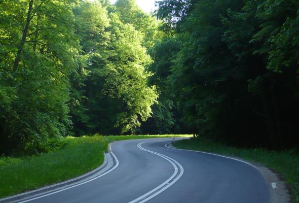 Problematyczna rozbudowa drogi do Grodziczna